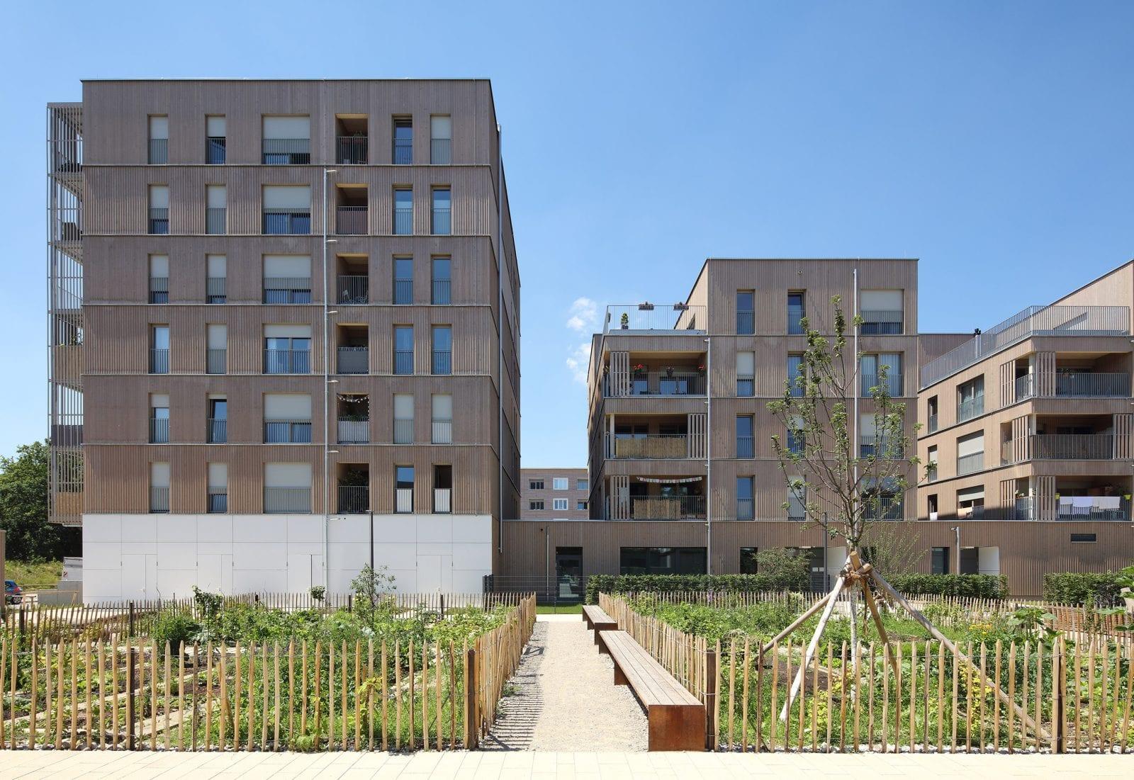 Von den 57 Wohnungen der GWG München werden 45 gefördert. Jeder der vier Baukörper verfügt über eine begrünte Dachfläche. (Foto: Conné van d'Grachten)